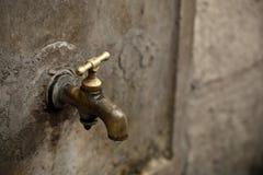 饮水器 免版税库存照片