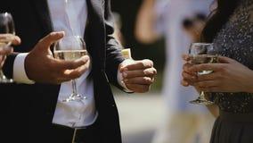 饮用的朋友敬酒使叮当响的酒杯的酒复杂晚餐会假日假期旅行生日快乐 股票视频