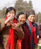 饮用的老微笑的茶妇女 免版税库存照片