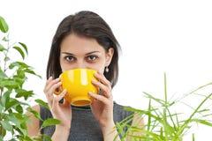 饮用的茶妇女 免版税库存照片