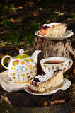 饮用的茶用两的饼干 库存照片