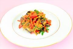 饮食和健康食物:沙拉用茄子和红萝卜 库存照片