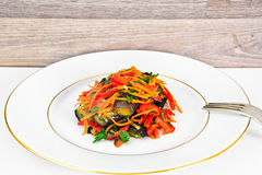 饮食和健康食物:沙拉用茄子,红萝卜 库存图片