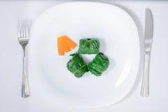 饮食唐莴苣滚动用切好的红萝卜 图库摄影