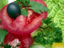 饮食成份沙拉 图库摄影