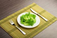 饮食概念。 在牌照的绿色莴苣 库存图片