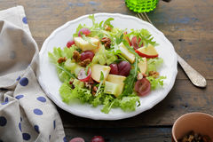 饮食沙拉用芹菜 免版税图库摄影