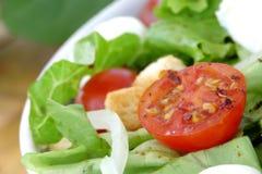 饮食沙拉 免版税库存照片