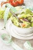饮食混杂的蔬菜沙拉mesclun、mache、莴苣和che 免版税库存图片