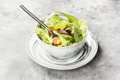 饮食混杂的蔬菜沙拉mesclun、mache、莴苣和che 库存照片