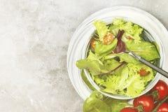 饮食混杂的蔬菜沙拉mesclun、mache、莴苣和che 图库摄影