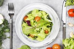 饮食混杂的蔬菜沙拉mesclun、mache、莴苣和che 免版税库存照片