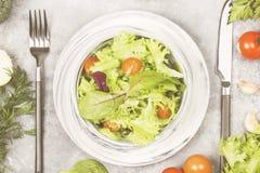 饮食混杂的蔬菜沙拉mesclun, mache,莴苣 免版税库存图片