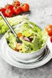 饮食混杂的蔬菜沙拉mesclun, mache,莴苣 免版税图库摄影