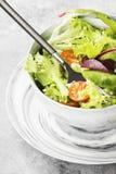 饮食混杂的蔬菜沙拉mesclun, mache,莴苣 免版税库存照片