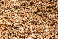 饮食荞麦 免版税库存照片