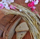 饮食,庄稼,黑麦,健康食物,碳水化合物,早餐,新芽,耳朵,花,麦子,燕麦,大麦,领域,开花,面包, Bu 免版税库存照片