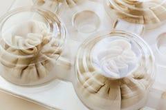 饺子或馄饨结冰的碗包装  免版税图库摄影