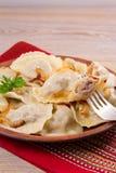 饺子,充满牛肉肉和供食与油煎的葱 Varenyky, vareniki, pierogi, pyrohy 与填装的饺子 图库摄影