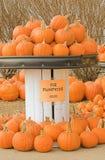 饼南瓜在农夫市场上 免版税库存照片