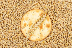 饼干和麦子 免版税库存照片