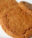 饼干姜 免版税库存图片