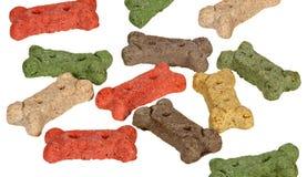 饼干狗 免版税图库摄影
