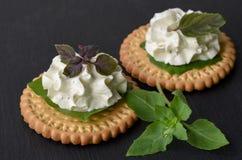 饼干薄脆饼干开胃菜用乳脂干酪和蓬蒿顶部 免版税库存图片