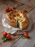 饼用乳酪和蕃茄 库存照片