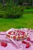 饼草莓 库存图片
