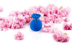 首饰的蓝色天鹅绒礼物盒,围拢由桃红色佐仓开花 免版税图库摄影
