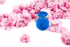 首饰的蓝色天鹅绒礼物盒,围拢由桃红色樱桃开花 免版税库存图片