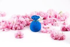 首饰的蓝色天鹅绒礼物盒 库存照片