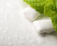 香口糖用新鲜的绿色薄菏 免版税库存照片