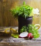 茴香和荷兰芹芬芳草本花束,在木背景,农村样式,选择聚焦 库存照片
