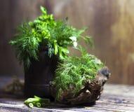 茴香和荷兰芹芬芳草本花束,在木背景 库存照片