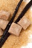 香子兰豆和棕色香草糖 库存图片