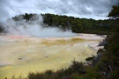 香宾水池在Waiotapu 免版税库存照片
