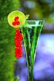 香宾玻璃用红浆果 免版税库存照片