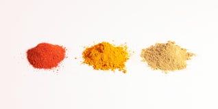 香料、姜黄粉末、香菜粉末和红色辣椒粉小堆  免版税库存照片