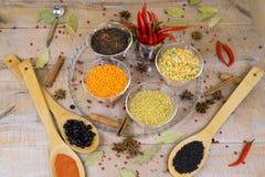 香料用在木背景的红辣椒用不同的沙粒 库存照片