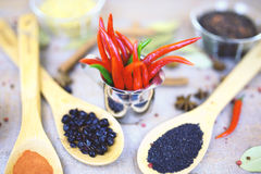 香料用在木背景的红辣椒用不同的沙粒 库存图片