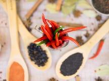 香料用在木背景的红辣椒用不同的沙粒 免版税库存图片