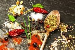 香料的不同的类型在板岩板材的 香料销售  辣食物的准备 广告香料卖主 免版税图库摄影