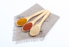 香料粉末 在辣椒粉、咖喱和姜的特写镜头 图库摄影