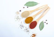 香料粉末 在辣椒粉、咖喱和姜的特写镜头 免版税库存照片