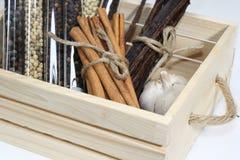 香料草本,在篮子的调味品 免版税图库摄影