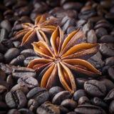 香料;在咖啡豆背景的八角  免版税库存照片