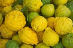 香柠檬成熟非洲黑人石灰 免版税库存图片