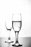 香槟单色照片在白色桌上的在白色背景 库存照片